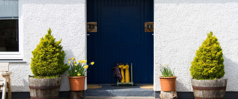 front door with decorative plants